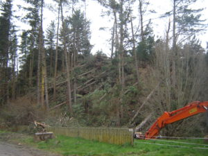 Damage following a coastal storm on the North Island in August 2008.